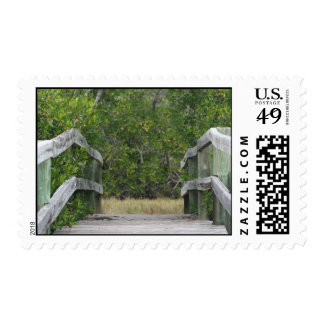 Dock leading into green mangrove stand stamp