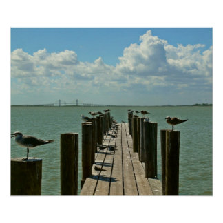Dock of the gulls Poster