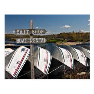 Docked Boats Postcard