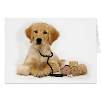 Doctor de oro del perrito felicitación
