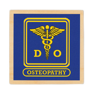 64B15 BOARD OF OSTEOPATHIC MEDICINECHAPTER 64B15-6 PHYSICIAN ...