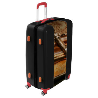 Doctor - The Hypodermic Syringe Luggage