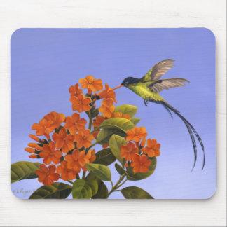 Doctorbird - pájaro nacional de Jamaica Alfombrilla De Ratones
