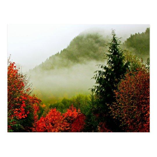 Dodge Road Mist (bright) Postcard