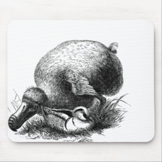 Dodo Bird Mousepad