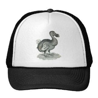 Dodo Lithograph Trucker Hat