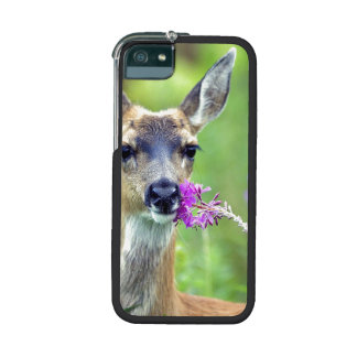 Doe a Deer Cover For iPhone 5