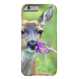 Doe a Deer Barely There iPhone 6 Case