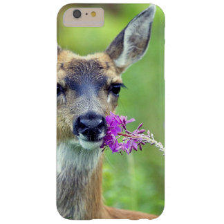 Doe a Deer Barely There iPhone 6 Plus Case