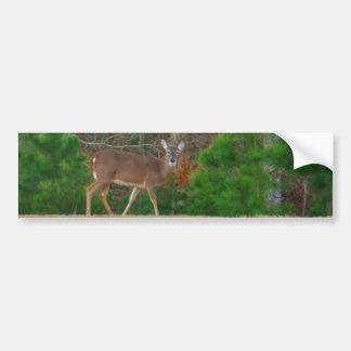 Doe a Deer & Pine Trees Bumper Sticker