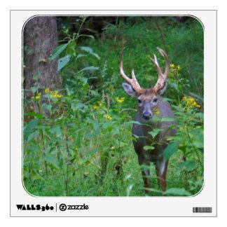 Doe A Deer Wall Sticker