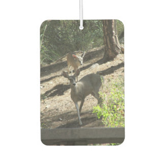 Doe and Her Fawn Car Air Freshener
