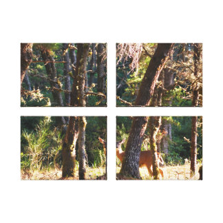 Doe in Nehalem Bay State Park Forest Canvas Print