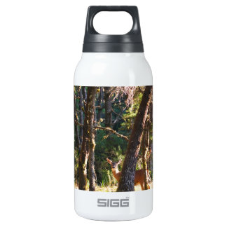 Doe in Nehalem Bay State Park Forest Insulated Water Bottle