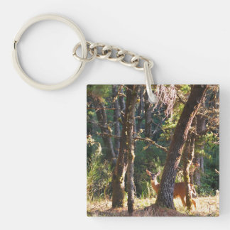 Doe in Nehalem Bay State Park Forest Keychain