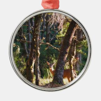 Doe in Nehalem Bay State Park Forest Ornament
