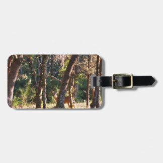 Doe in Nehalem Bay State Park Forest Tag For Luggage