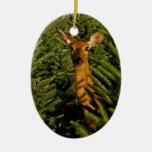 Doe in Pine Trees Ornament