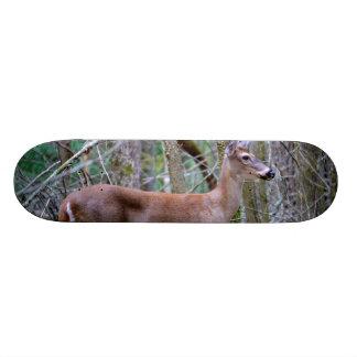 Doe Skateboard