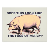 Does This Look Like The Face of Mercy?  Grumpy Pig Flyer