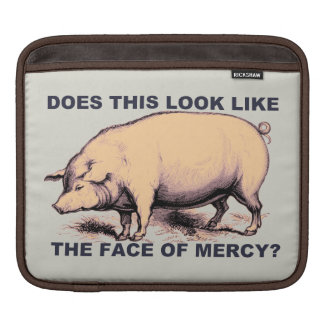 Does This Look Like The Face of Mercy?  Grumpy Pig Sleeves For iPads