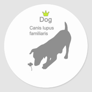 Dog2 g5 classic round sticker