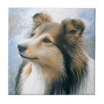 Dog 122 Sheltie Collie Tile
