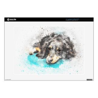 dog-2719601_1920