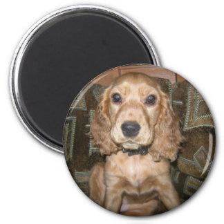 Dog 2 Inch Round Magnet