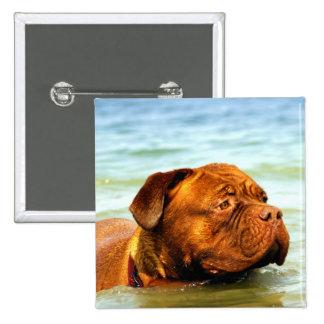 Dog 2 Inch Square Button