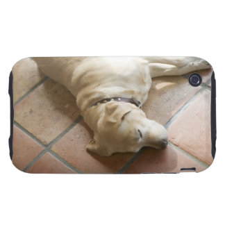 Dog 3 iPhone 3 tough cover