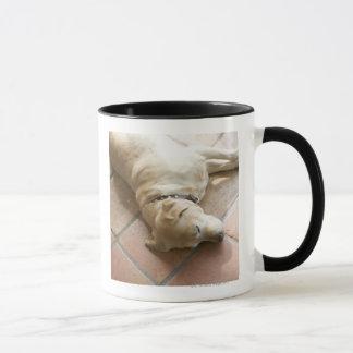 Dog 3 mug