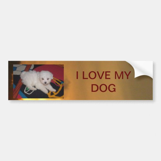 Dog Adesivo