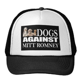 dog against romney trucker hats