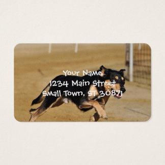 dog agility practicing business card
