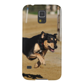 dog agility practicing case for galaxy s5