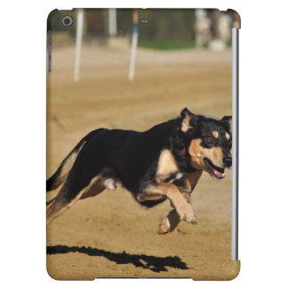 dog agility practicing iPad air case