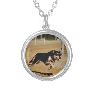 dog agility practicing round pendant necklace