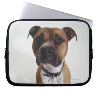 Dog, American Staffordshire Terrier sitting, Laptop Computer Sleeve