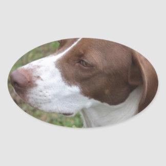 Dog an attention oval sticker