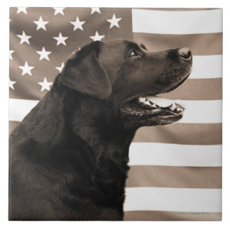 Dog and American flag Large Square Tile