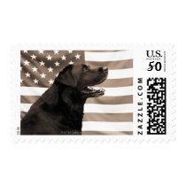 Dog and American flag Postage