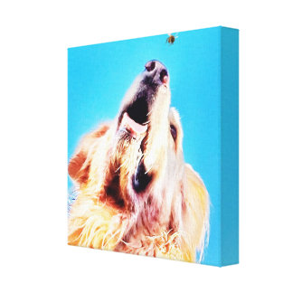 Dog And Bee Canvas Print