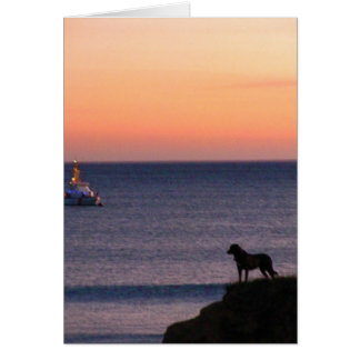 Dog and Boat: Lucky Shot Greeting Cards