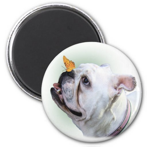 Dog and Butterfly 2 Inch Round Magnet