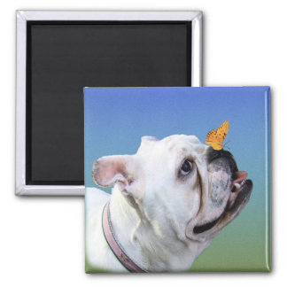 Dog and Butterfly 2 Inch Square Magnet