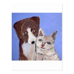 dog and cat by eric ginsburg postcard
