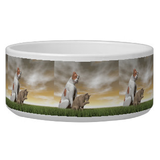 Dog and cat friendship - 3D render Bowl