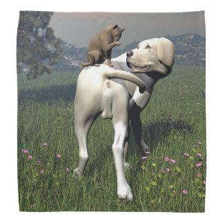 Dog and cat friendship bandana