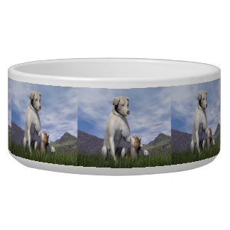 Dog and cat friendship bowl